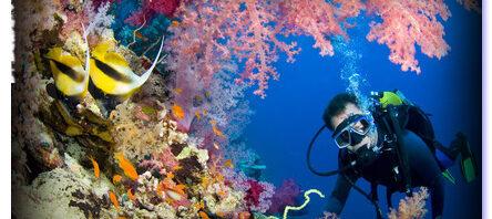 Puerto Vallarta Costa Sur, el horizonte aventurero