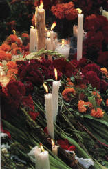 Day of the Dead Ritual Serenity - Book preview