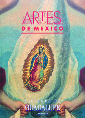 Visions of Guadalupe - Book Cover