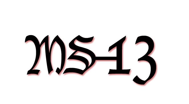 Image result for ms13 logo